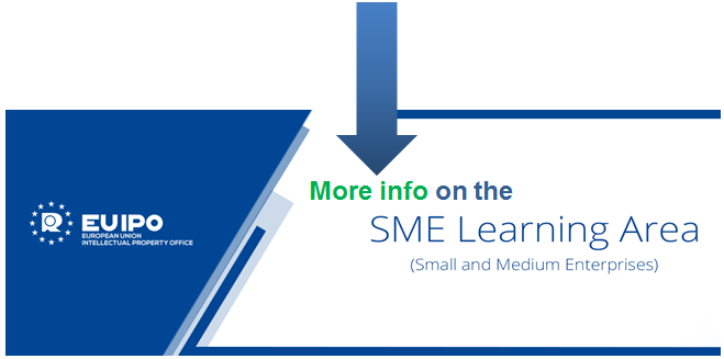 More info on the SME Learning Area